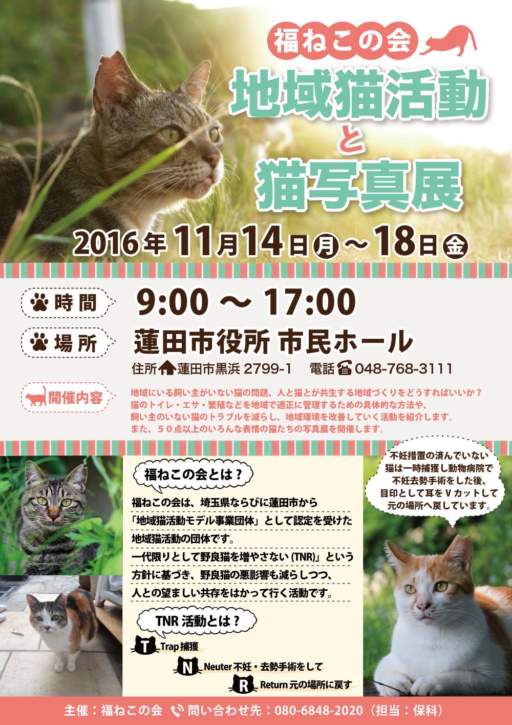 地域猫活動と猫写真展