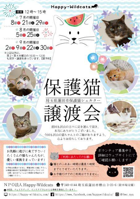 保護猫譲渡会のお知らせ
