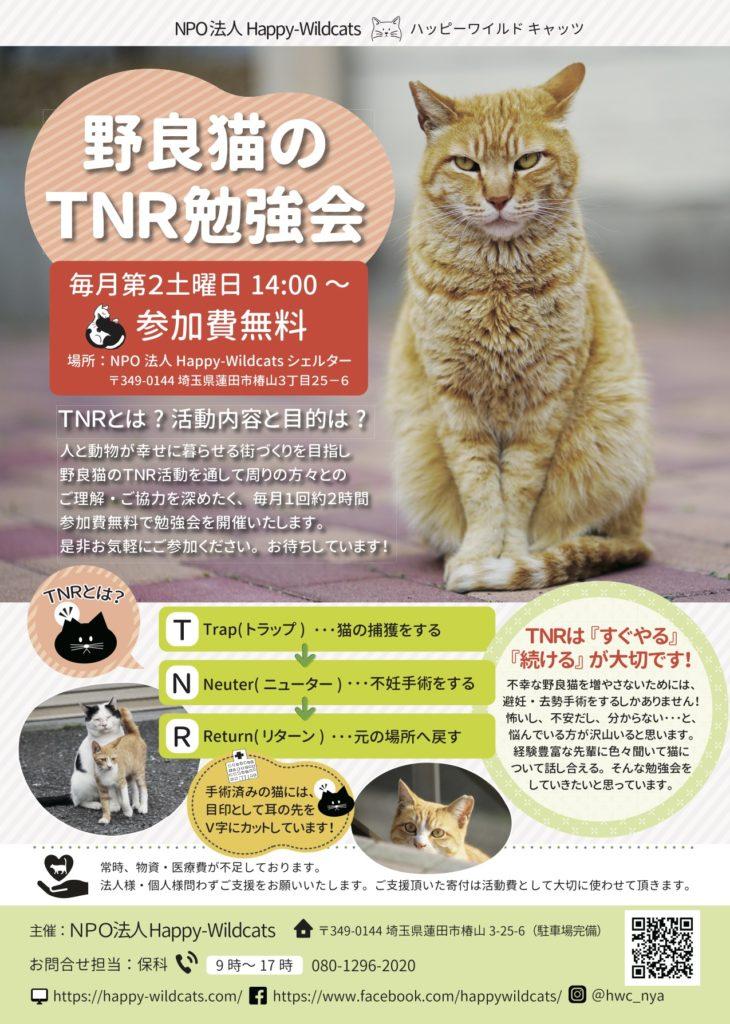 7/13 TNR勉強会の開催