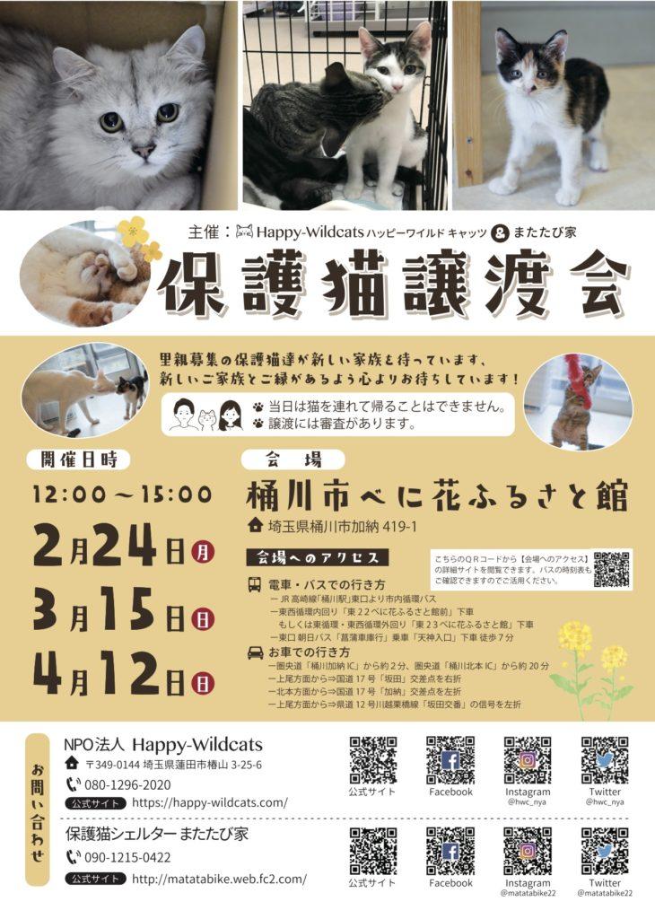 Happy-Wildcats&またたび家 保護猫譲渡会開催のお知らせ