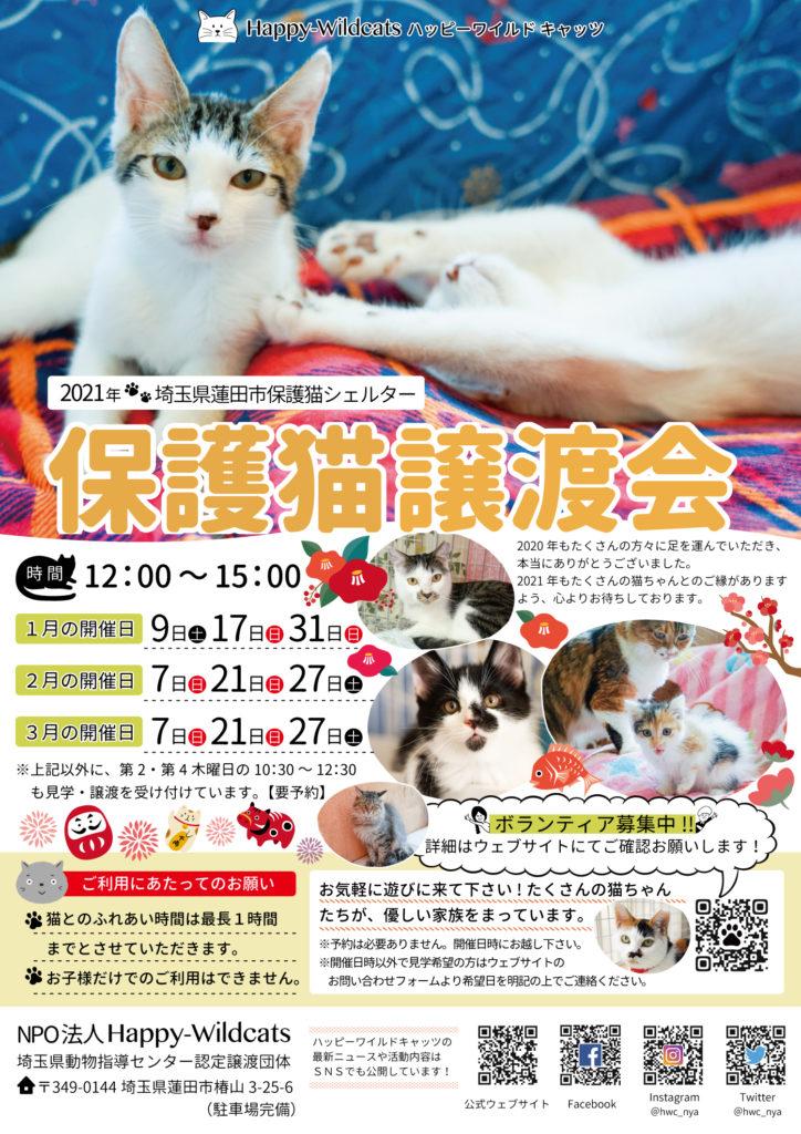 2021年1〜3月の保護猫譲渡会のお知らせ