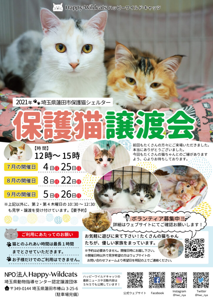 2021年7〜9月の保護猫譲渡会のお知らせ