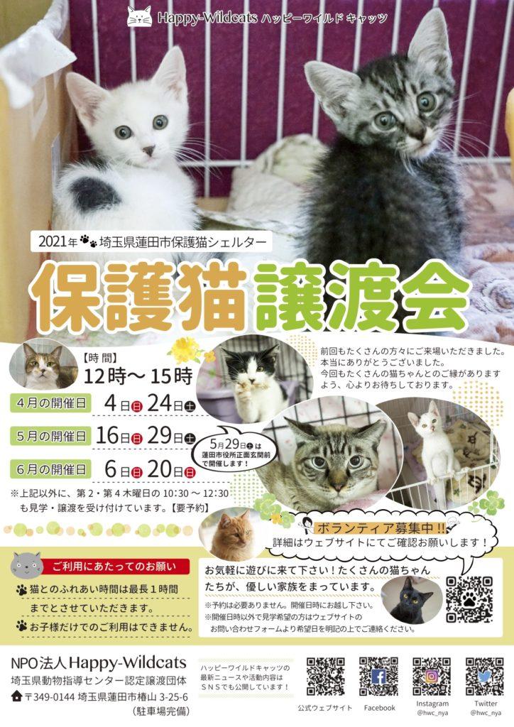 2021年4〜6月の保護猫譲渡会のお知らせ