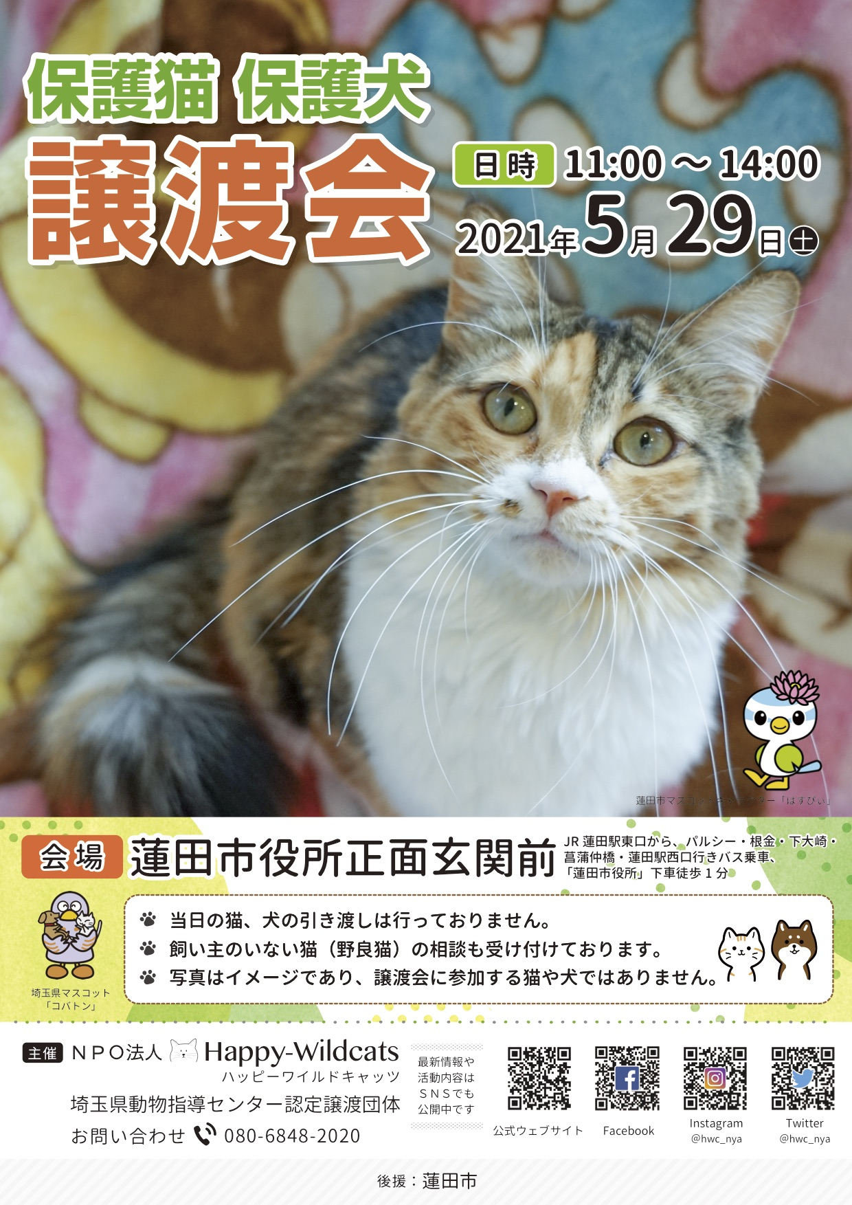 保護猫・保護犬譲渡会