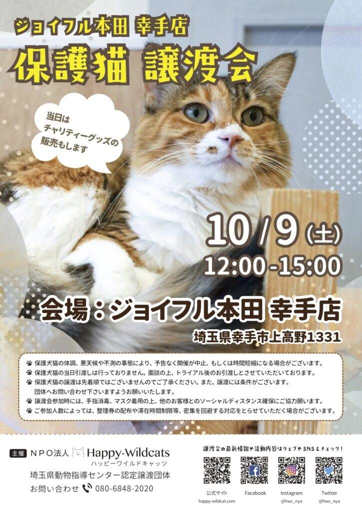 ジョイフル本田 幸手店にて保護猫譲渡会